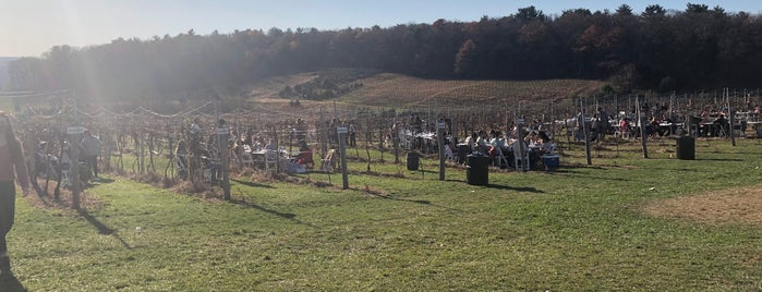 Blue Ridge Estate Vineyard & Winery is one of Lehigh Valley wine trail.
