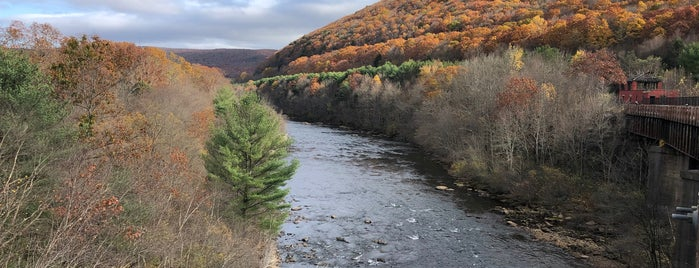 Lehigh Gorge State Park is one of Poconos.