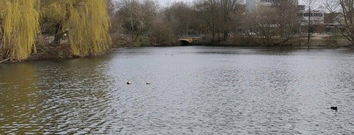 Eilbekpark is one of Lugares favoritos de Daniel.