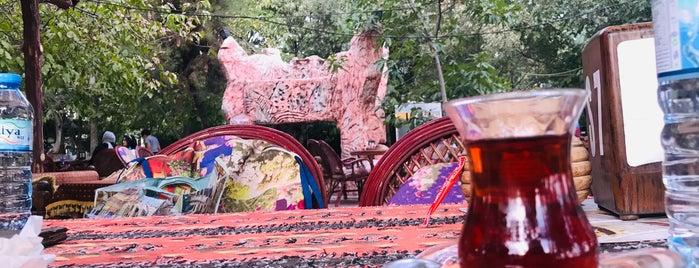 Kervansaray Botanik Cafe is one of Tempat yang Disukai Adalet.