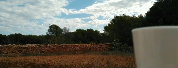 El Pilar de la Mola is one of Formentera.