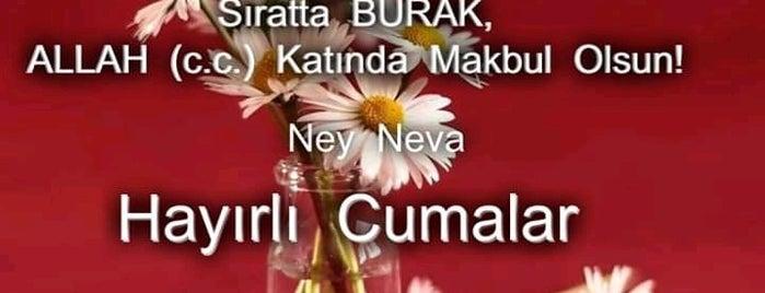 Aliya Izzet Begoviç Parkı Yürüyüş Yolu is one of Emre'nin Beğendiği Mekanlar.