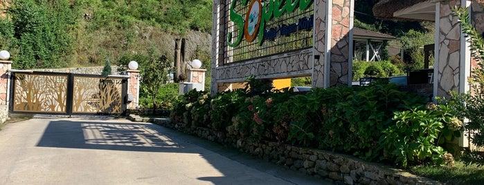 Sopeli Doğal Yaşam Köyü is one of Turkeya.