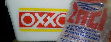 Oxxo is one of Puerto Morelos.