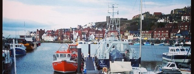 Whitby Marina is one of Locais curtidos por Carl.