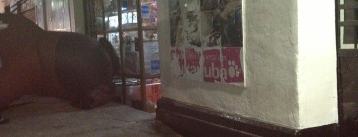 Bichos Boutique is one of Daniel: сохраненные места.