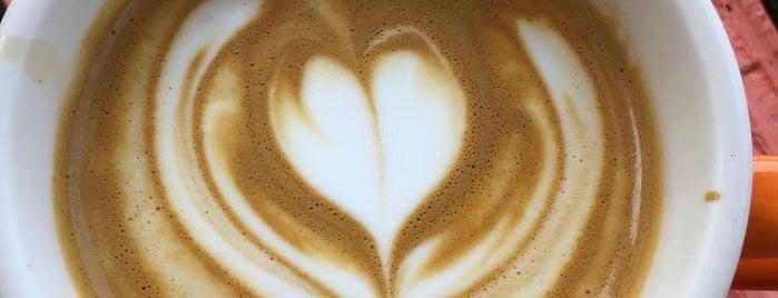 Theory Coffee Co. is one of Kyle'nin Beğendiği Mekanlar.