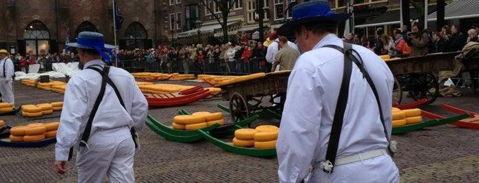 Alkmaar is one of The Netherlands.
