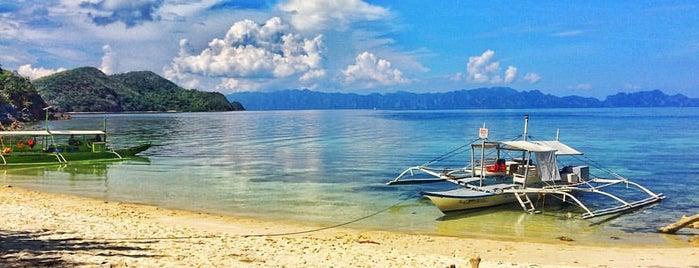 Malcapuya Island is one of Filipinler-Manila ve Palawan Gezilecek Yerler.