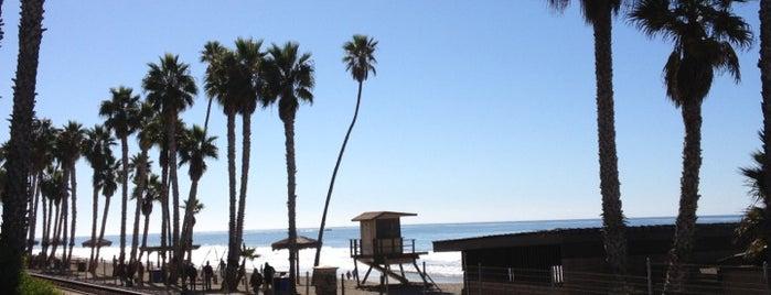 Beach Garden Cafe is one of OC SoCal Trip @Kurtwvs.