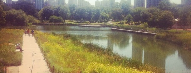 Lincoln Park is one of Chi.