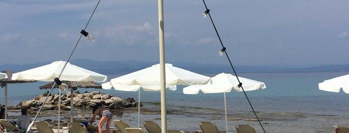 Sparos Meza Bar is one of Greece.
