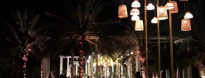 مزرعة الشلهوب-الدرعية is one of Ahmedさんのお気に入りスポット.