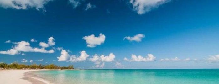Blue Sky Rentals is one of Posti che sono piaciuti a Mimi.