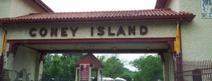 Coney Island Amusement Park is one of Historian.