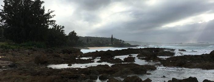 Shark's Cove is one of Tempat yang Disukai Sam.