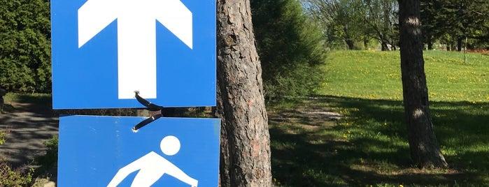 Grand Parc Urbain is one of Tempat yang Disukai Juliana.