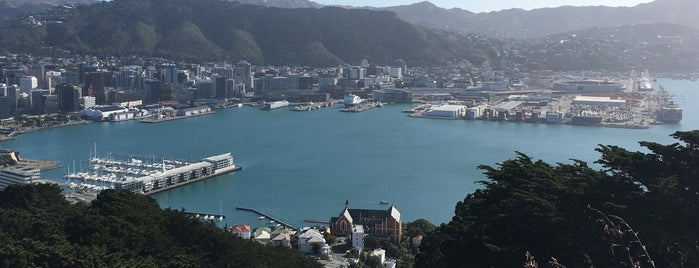 Wellington Town Belt is one of To do: New Zealand.
