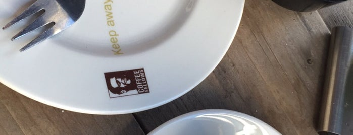 Coffee Fellows is one of Europe.
