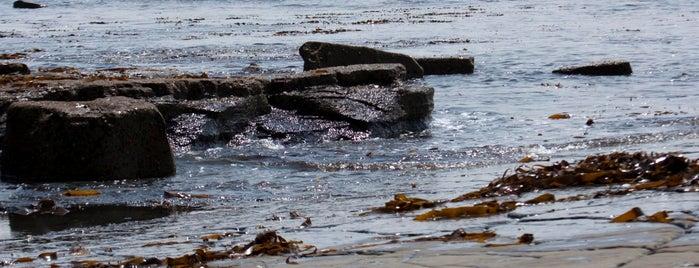 Kimmeridge Bay is one of Lugares favoritos de Paul.