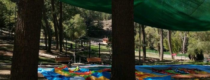 Milas Tabiat Parkı is one of mekanlar.
