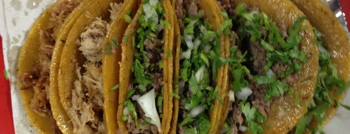 Tacos Primo is one of [To-do] Monterrey.