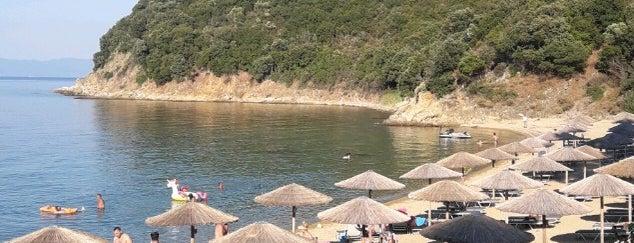 Rodia Beach Bar is one of Locais curtidos por Tolis.