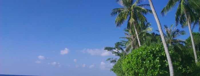 Taman Nasional Karimunjawa is one of National Parks.