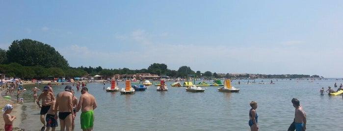 Bijeca beach is one of Istria 🇭🇷.