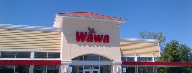 Wawa is one of QueenMaureen : понравившиеся места.