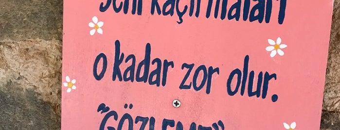 Çiçekli Ev is one of Locais curtidos por Snm.