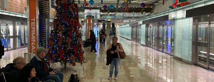 AeroTrain - Main Terminal is one of Locais curtidos por Leonard.