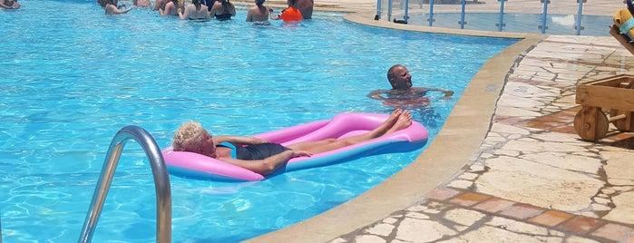 Dolphin Pool at The Three Corners Rihana Resort El Gouna is one of El Gouna.