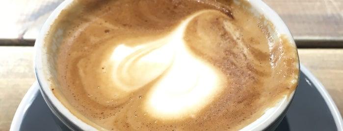 single cafe frankfurt am main