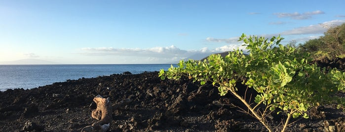 ʻĀhihi-Kīnaʻu Natural Area Reserve is one of Locais curtidos por Karla.