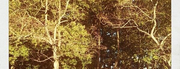 兜谷公園 is one of Lieux qui ont plu à Shigeo.