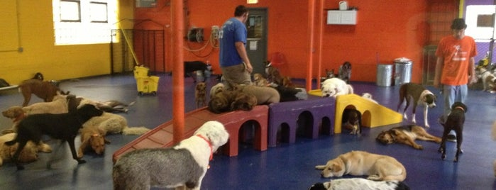 Urban Pooch Canine Life Center is one of Locations.