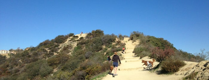 Runyon Canyon Park is one of LA LA LAND🌴🌞.