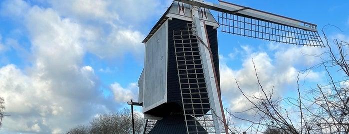 Standerdmolen Bergeijk is one of To do in #bergeijk city by Ruudjeve.