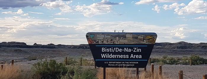 Bisti/De-Na-Zin Wilderness is one of New Mexico.