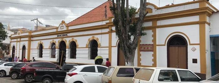 Mercado Municipal is one of Locais curtidos por Rui.