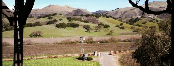 Zaca Mesa Winery & Vineyard is one of Dan 님이 좋아한 장소.