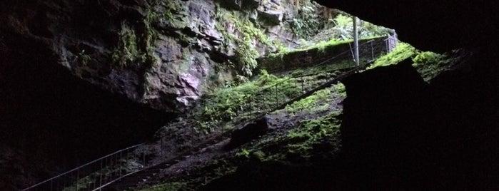Dunmore Cave is one of Honeymoon.