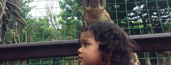 Maharani Zoo & Goa Lamongan is one of Best places in Lamongan, Indonesia.