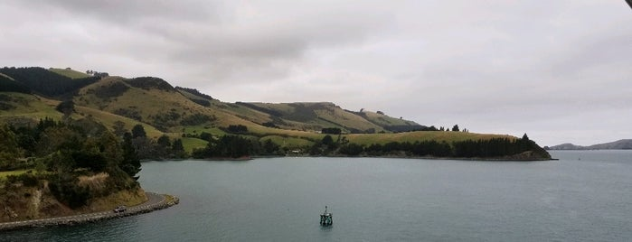 Port Chalmers is one of New Zealand: Done.