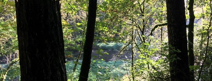 Lacamas Creek Trailhead is one of Portland.