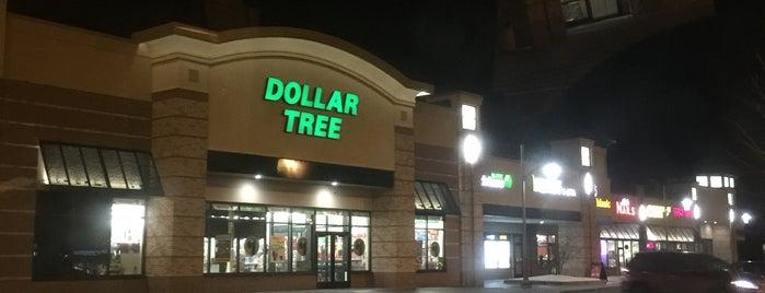 Dollar Tree is one of Janet'in Beğendiği Mekanlar.