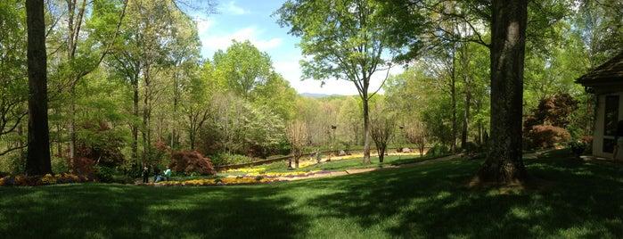 Gibbs Gardens is one of Tempat yang Disukai Ken.