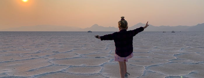 Bonneville Salt Flats is one of สถานที่ที่ Kirill ถูกใจ.