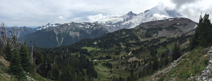 Mount Rainier National Park is one of Kirill : понравившиеся места.